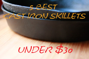 5 Best Cast Iron Skillets Under $30